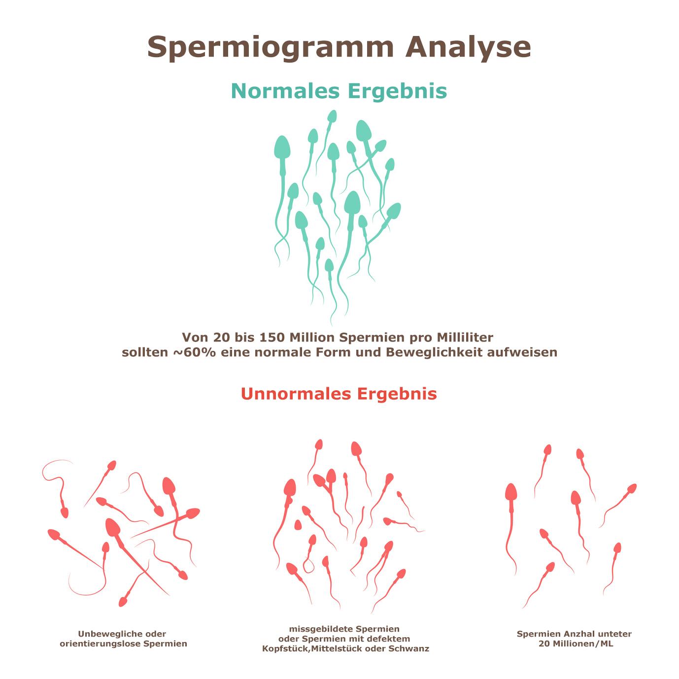 spermiogramm verbessern